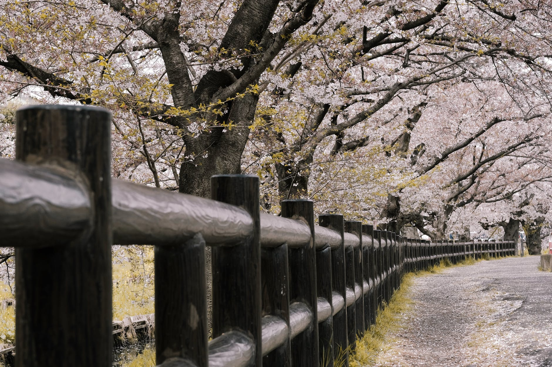 black wooden railing